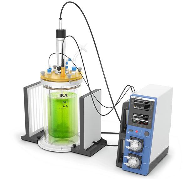ascomex laborator